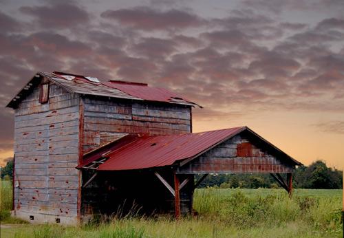 timmonsville-tobacco-barn1