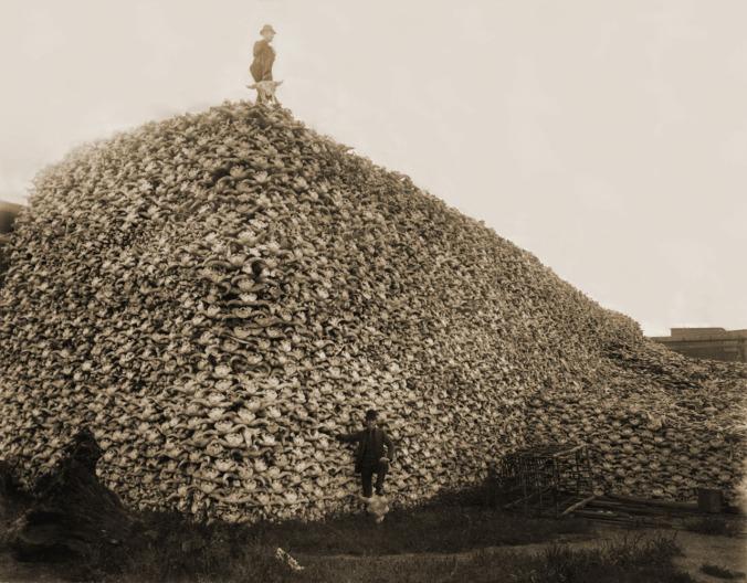 pile-of-bones saskatchewan