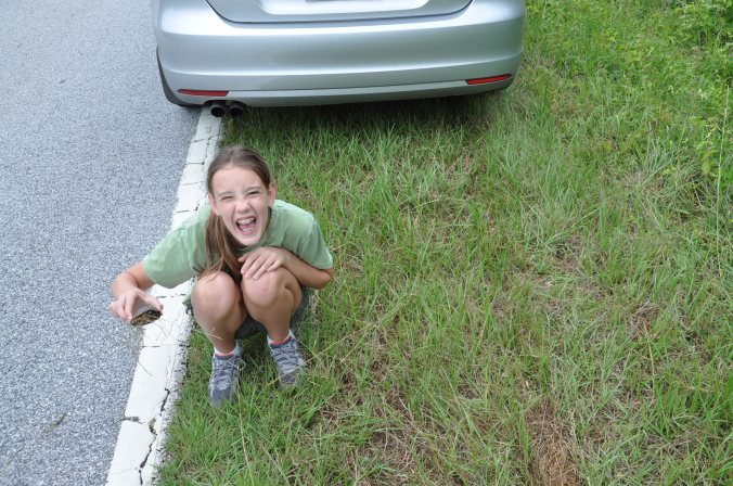 Daughter No. 4, having rescued a Eastern Box Turtle from the middle of the road. Both were enjoying a good joke.