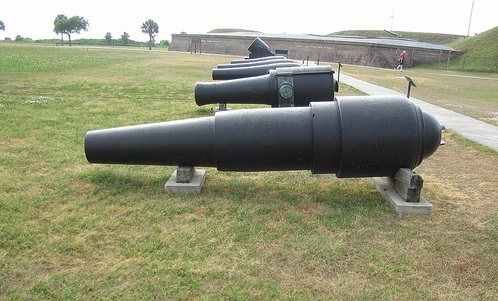 fort moultrie guns