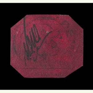 Close-up view of One-Cent Magenta.
