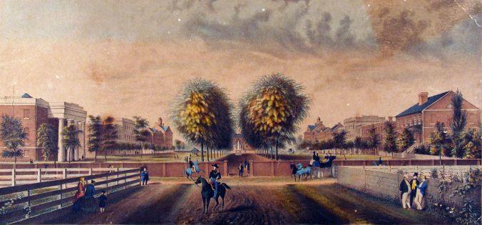 South_Carolina_College_Horseshoe_1850