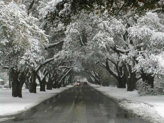 south carolina snow