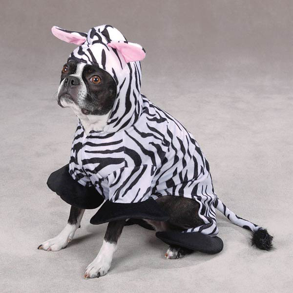 zebra-dog-costume