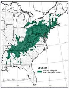 Range of American chestnut around turn of the 20th century.