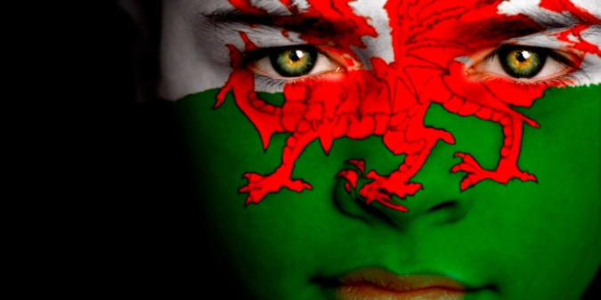 Portrait of a boy with the flag of Wales painted on his face.