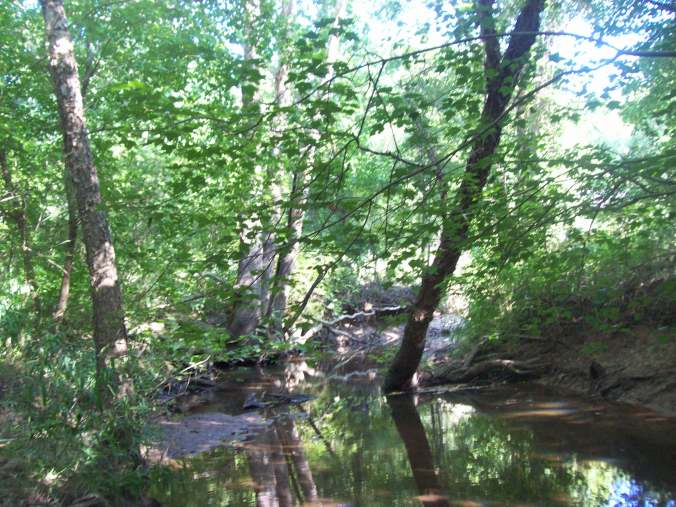 Beaver Dam Creek 8 13 2016 028